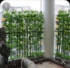 Pin de Wendi Wolfe em Courtyard em 2020 | Privacidade jardim, Paisagismo  jardim, Trepadeiras