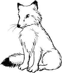 Small Picture Baby Fox Coloring Pages 7389