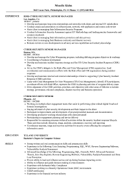 Cyber Security Senior Resume Samples Velvet Jobs