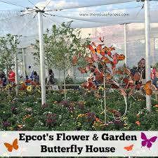 disney flower and garden. Epcot International Flower And Garden Festival Butterfly House From Themouseforless.com #DisneyWorld #FlowerandGarden Disney