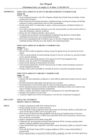 Assistant Project Coordinator Resume Samples Velvet Jobs