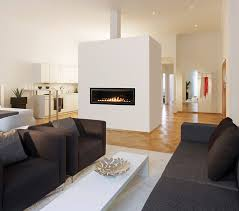 elite lv linear direct vent fireplace