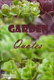 Garden Quotes Beauteous Garden Quotes Funny Punny Witty And Whimsical