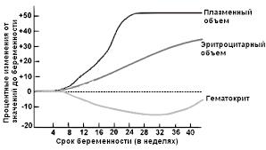 Анемия беременных Беременность Медицинская библиотека Анемия беременных