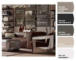 MANCAVE Paint Colors From Chip It By SherwinWilliams