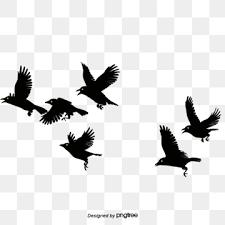 鳥のシルエットのpng画像素材 イラスト ベクトルとpsd Pngtreeに