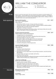 Account Executive Resume Samples Fiveoutsiders Com