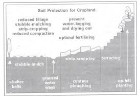 different methods of soil conservation essay methods of soil conservation