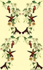 vintage bird wallpaper tumblr. Interesting Tumblr Vintage Bird Wallpaper Tumblr  Photo20 On Bird Wallpaper Tumblr
