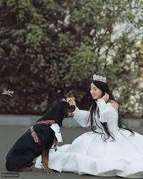 حفل زفاف البلوجر المصرية هبة مبروك على كلب - ليالينا