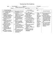 Nursing Care Plan Guidelines Sample Nursing Care Plan