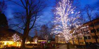 Plant City Christmas Lights Festive Christmas Lighting For Public Spaces Mk