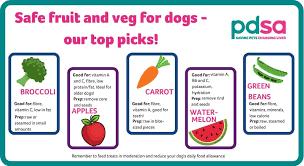 safe fruit and veg for dogs pdsa