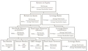 Understanding The Profitability Ratio Return On Equity