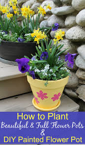 how to plant beautiful full flower pots diy painted flower pot