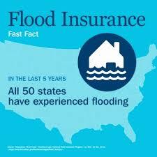 Fema Flood Insurance Quote Classy Fema Flood Insurance Quote Collection Of Fema Flood Insurance Quote