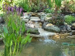 pond design stilted deck area planting garden
