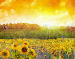 stock photo sunflower flower blossom oil painting of a rural sunset landscape with a golden sunflower field warm light of the sunset and hill color in
