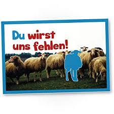 Du Wirst Uns Fehlen Schafe Kunststoff Schild Als Abschiedskarte