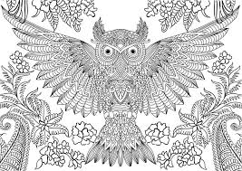 Abstract Owl Coloring Pages For Adults Coloringstar