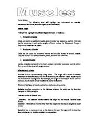 example about contractions in college essays assignment surely you determine his strengths and weaknesses essay poe