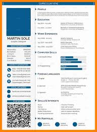 5 Cv Format Professional Resume Sections