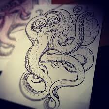 Small Picture Image result for realistic octopus drawing Art Pinterest