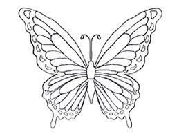 10 Disegni Di Farfalle Da Colorare Mamma E Casalinga