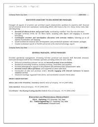 Inventory Resume - Manager Operations
