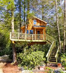 Pete Nelson Treehouse Masters Sweepstakes Treehouse Masters Cast Treehouse Masters Cast Changes Hollywood Soapbox Treehouse Masters Cast Architecture Home Design