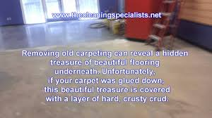 glue removal from carpet concrete or hardwood floor glue removal you