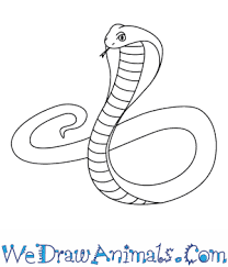 cobra drawing for kids. Delighful Kids Inside Cobra Drawing For Kids We Draw Animals