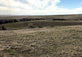 Saskatchewan farmers force rural municipality to stop construction where  First Nation artifacts found - National Indigenous Times