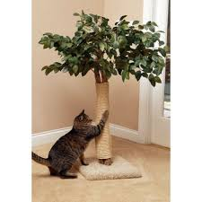 cool cat tree furniture. Cat Trees That Look Like Real Are The Coolest Thing Ever! Check Out This Cool Tree Furniture