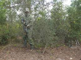 Best Camo Pattern Mesmerizing Florida Camouflage Cool And Concealed Florida Sportsman