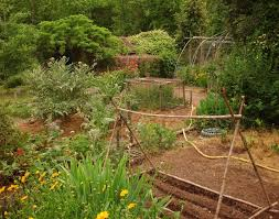 Small Picture How To Design A Potager Garden Gardening Know How