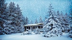 christmas snow hd. Exellent Christmas Snow Winter Scene HD Wallpaper 1920x1080 In Christmas Hd S