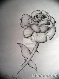черно белый эскиз тату с черной роedw 11032019 033 Tattoo