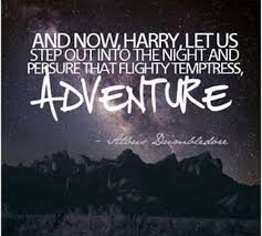 Hp Quotes 100 Most Inspirational Harry Potter Quotes HobbyLark 9