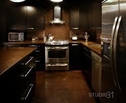 Small Picture Kitchen Designs Dark Cabinets Home Design Ideas