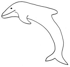 Disegno Di Delfino Da Colorare Cose Per Crescere
