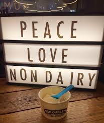 Vegan Ben and Jerrys in the UK - Review and Launch