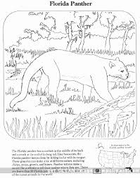 Small Picture Gar Animal Coloring Pages Coyote 9 Page From Category Select 24848