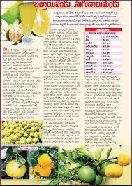 Kidney Patient Diet Chart In Telugu Vitamins Chart In Telugu Pdf Www Bedowntowndaytona Com