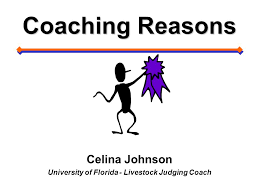 Celina Johnson University of Florida - Livestock Judging Coach - ppt video  online download