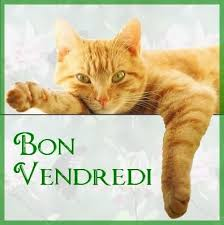 Image result for bon vendredi