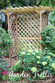 Best 25+ Trellis ideas ideas on Pinterest | Trellis, P garden and Flower  vines