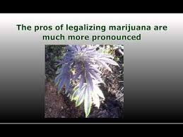 pros and cons of the legalization of marijuana