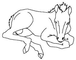 Kleurplatenwereldnl Gratis Dieren Paarden Kleurplaten Downloaden