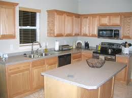what color to paint kitchenKitchen Ideas What Color To Paint Kitchen Grey Cabinets Kitchen